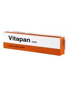 Vitapan Krem 100G