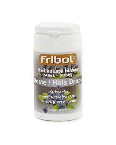 Fribol Sukkerf Host/Hals Blåbæ 60G